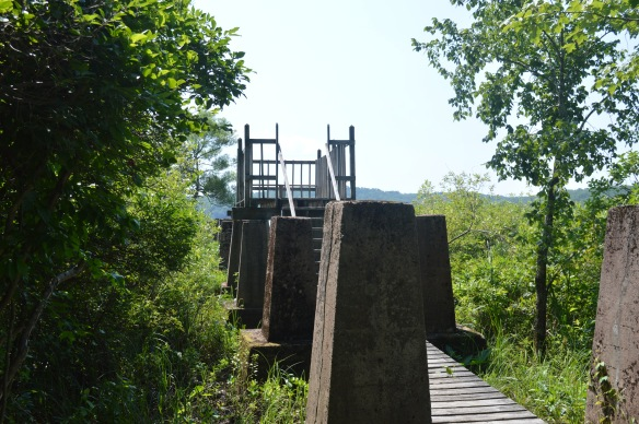 This observation tower along the Lake (Yellow) Trail at White Memorial sits at the point where ice was taken out of the lake and sent to the ice house.