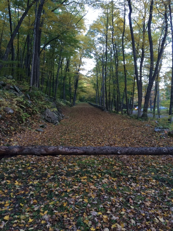 Fall is a wonderful time to explore the history of Litchfield County. At Macedonia State Park, a road built by the Civilian Conservation Corps during the Great Depression offers insights into the area's history.