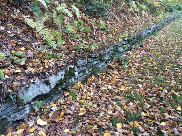 The explorer can appreciate the beauty of the CCC's stonewalls. The CCC was established by the Roosevelt Administration as a New Deal agency to both protect the environment and give work to 18-24 year old men.